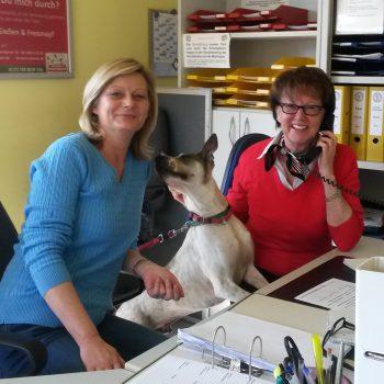Anja Franke, Tierheimhund Brownie und Sabine Hofmann